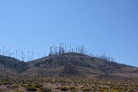 Tehachapi Wind Farm