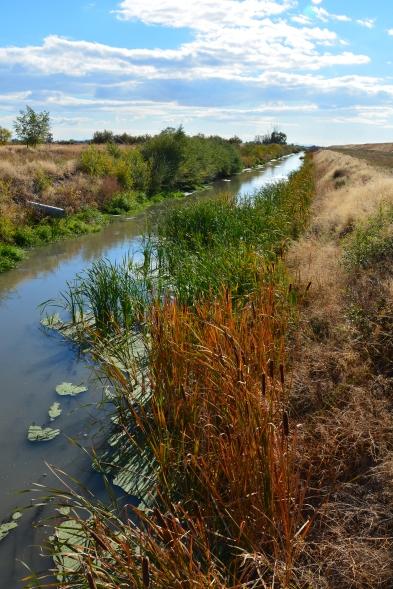 Irrigation canal near Great Salt Lake