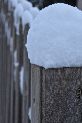 Inches of snow with more in the forecast