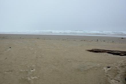 Beach, looking toward surf at high tide.
