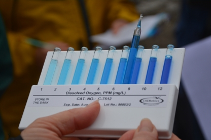 Concentration level Dissolved O2 = 7ppm