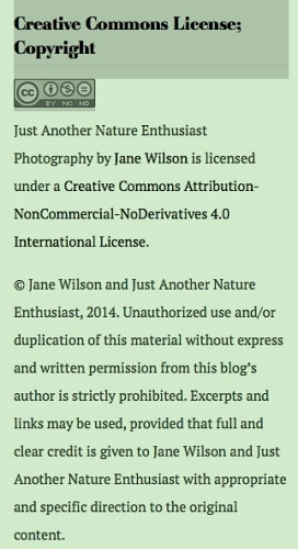 Creative Commons License