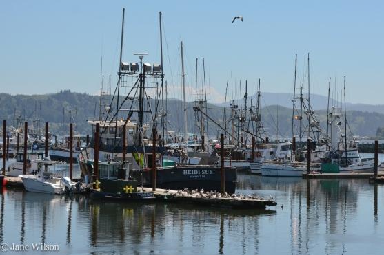 Port Dock 3