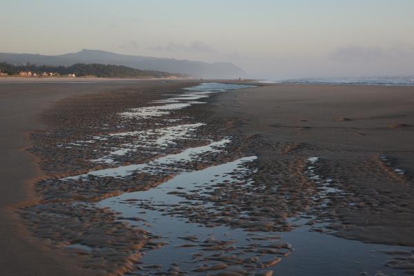 shoreline patterns