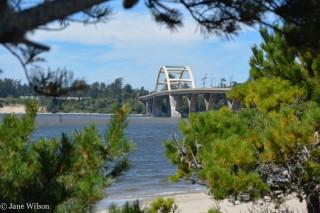 Alsea_Bay_Bridge_Interpretive_Ctr_8
