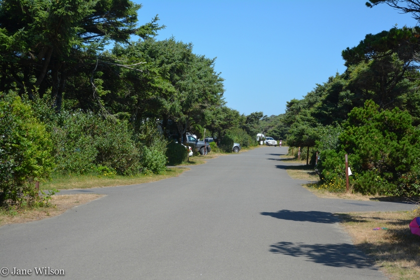 Beach-front camping lane with longer, back-in RV sites with electric hook-ups