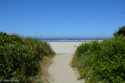 Beach Trails provide easy access to sandy beach