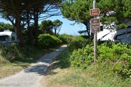 Beachside_trail_to_beach_1