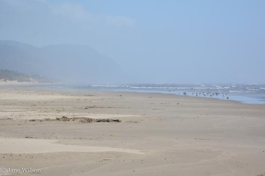 Cape Perpetua in the distance