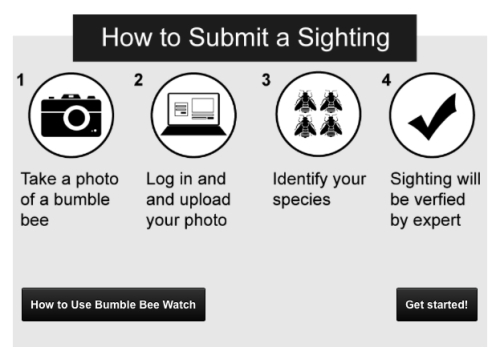 how_to_submit