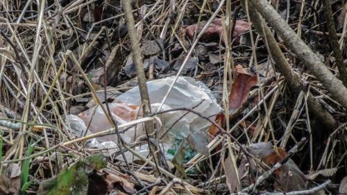 unwanted_plastics_2