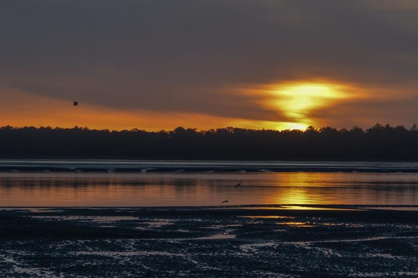 03-05-15_lan_netarts_bay_sunset