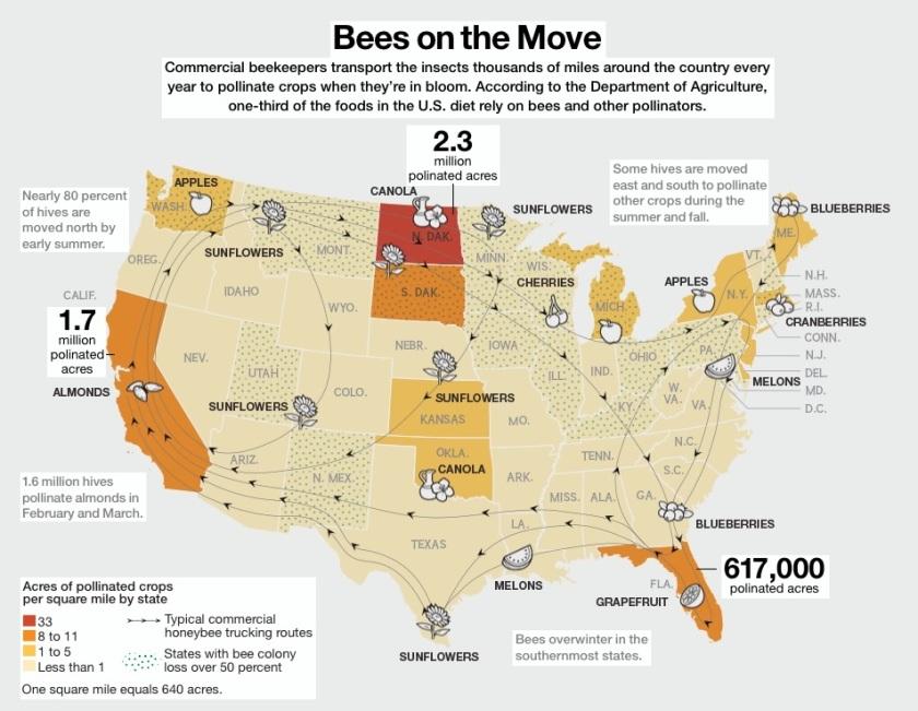 http://hampden-county-beekeepers.blogspot.com
